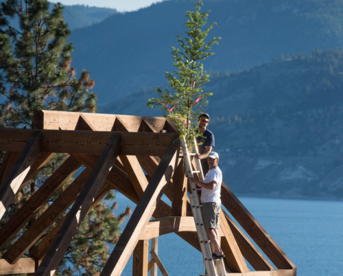 Why BC Douglas Fir Makes The Best Timber Frames